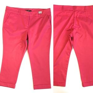 7th Avenue crop pant, Sz 12, pink, cuffed